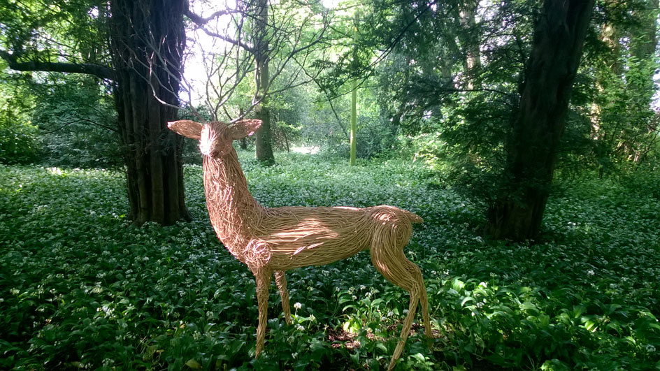 Willow sculpture of white stag