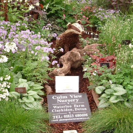 Willow sculpture of a badger at chelsea flower show