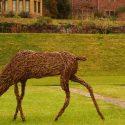 Willow sculpture of a doe