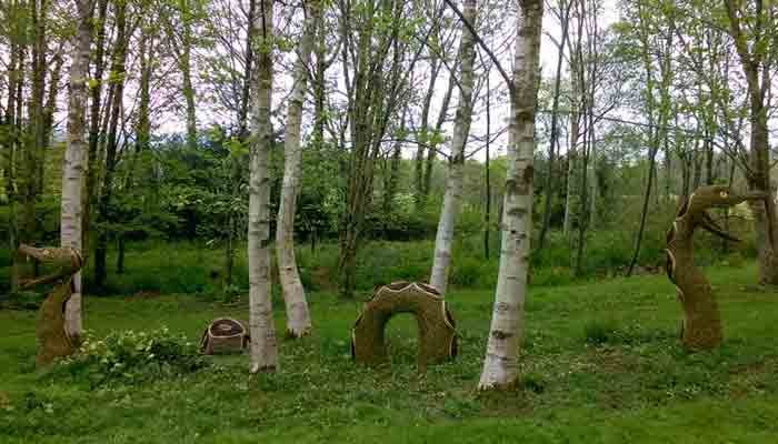 Woody fox willow artist sculptor the snake was created for the stone lane gardens on dartmoor for their exhibition called reflections workwithnaturefo