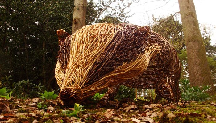 9ft Badger sculpture created for Knightshayes National Trust