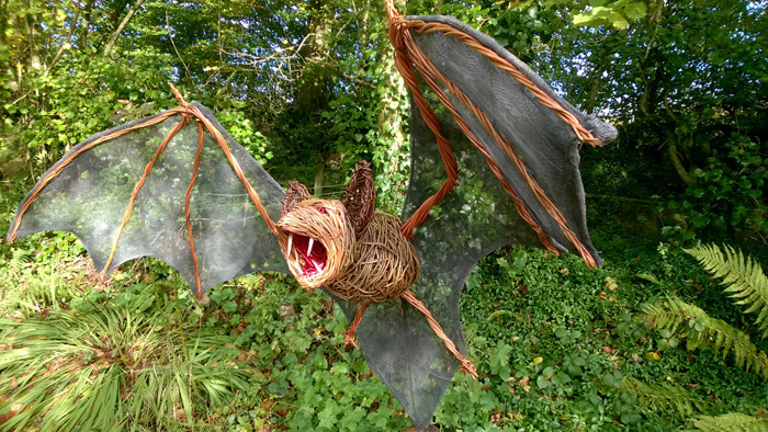 This bat was commissioned for someone at Knightshayes court , Tiverton, a national trust place. His name is Boris and he has a 5 ft wide wingspan. He is made of various coloured willows and aluminium wire mesh for his wings, all mounted on a pine plinth.