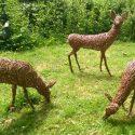 Willow sculpture of roe deer
