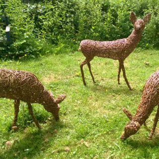 Willow sculpture of roe deer