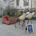 Willow sculpture of reindeer pulling sleigh