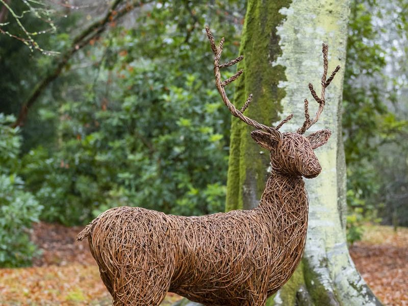 Willow sculpture of stag