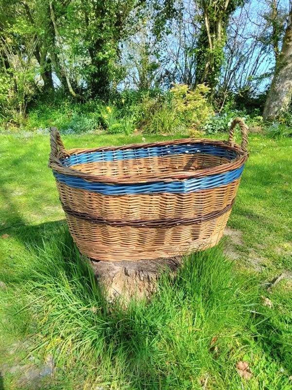 Willow washing basket with blue banding