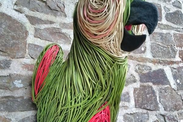 This 3 foot high Parrot head has been made for an upcoming exhibition. It is made of various dyed willows, has acrylic eyes and a papier mache beak.