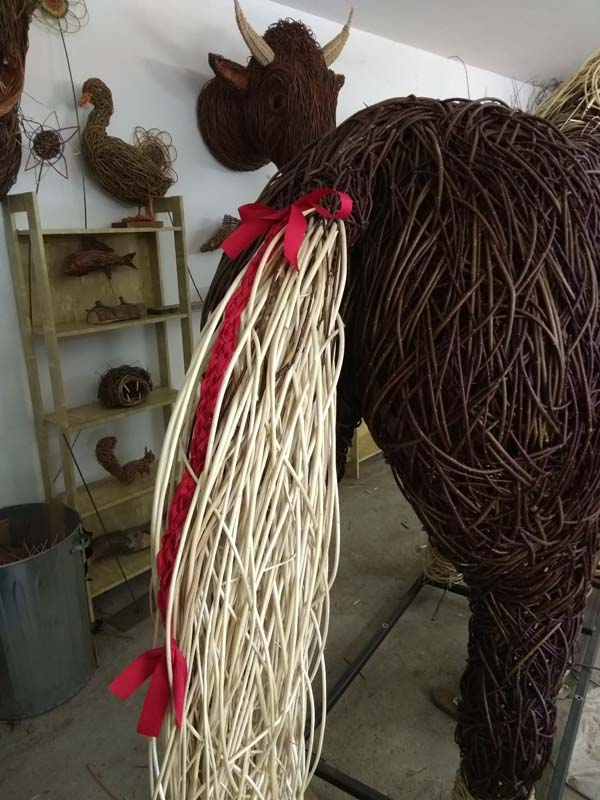 willow shire horse tail